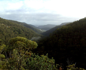 Nattai Gorge Lookout - Great Ocean Road Tourism