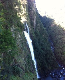 Ellenborough Falls - Great Ocean Road Tourism