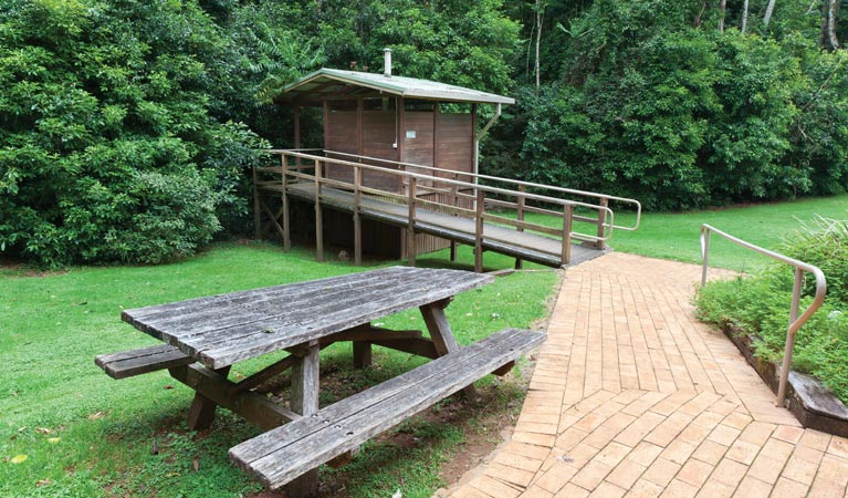 The Glade picnic area - Great Ocean Road Tourism