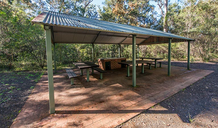 Brimbin picnic area - Great Ocean Road Tourism