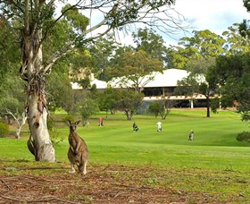 Pambula Merimbula Golf Club - Great Ocean Road Tourism