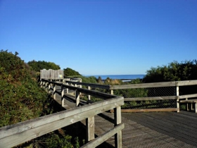 Lillico Beach - Great Ocean Road Tourism