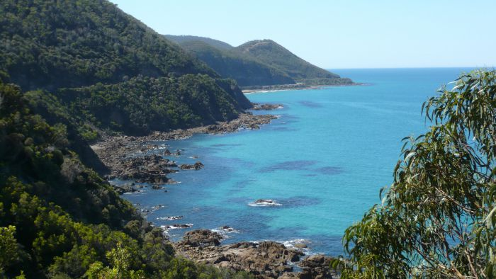 Australian Natural Treasures Touring - Great Ocean Road Tourism