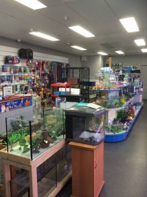Nambour Pet Shop - Great Ocean Road Tourism