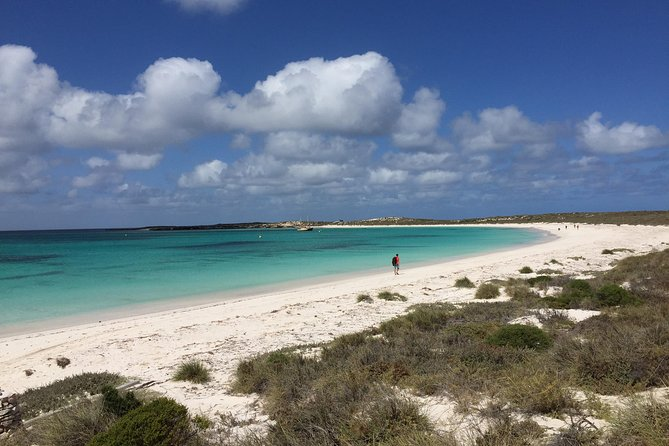 Abrolhos Island Half Day Fly and Flipper - Great Ocean Road Tourism
