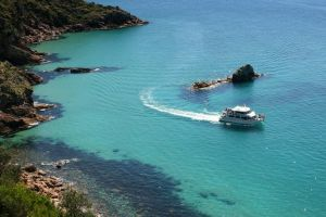Cape Woolamai Sightseeing Cruise from San Remo - Great Ocean Road Tourism