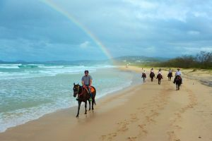Rainbow Beach Horse Ride - Great Ocean Road Tourism