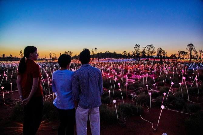 Uluru Field of Light Sunrise Tour - Great Ocean Road Tourism