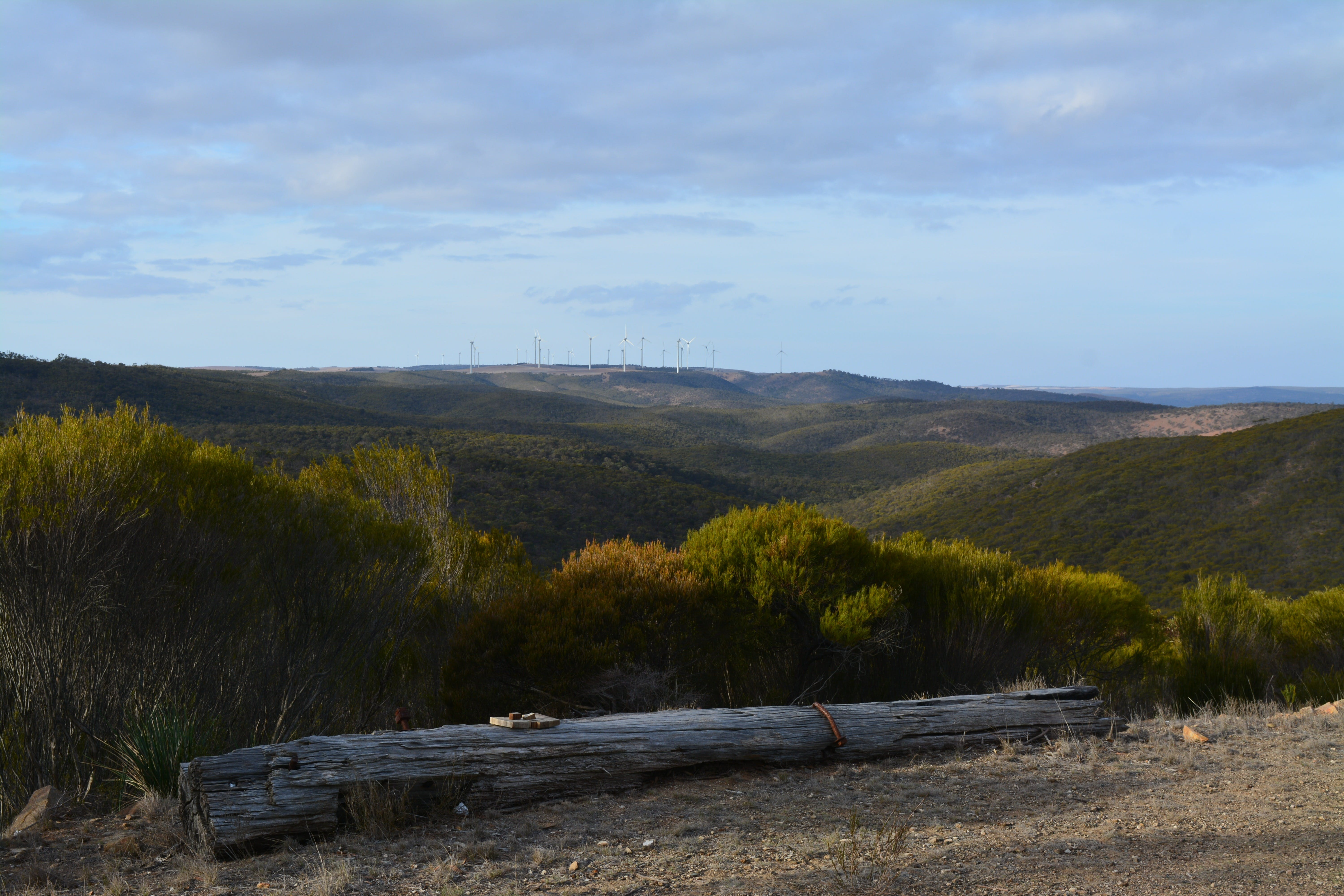 Cleve Hills Scenic Drive  Lookout - Great Ocean Road Tourism