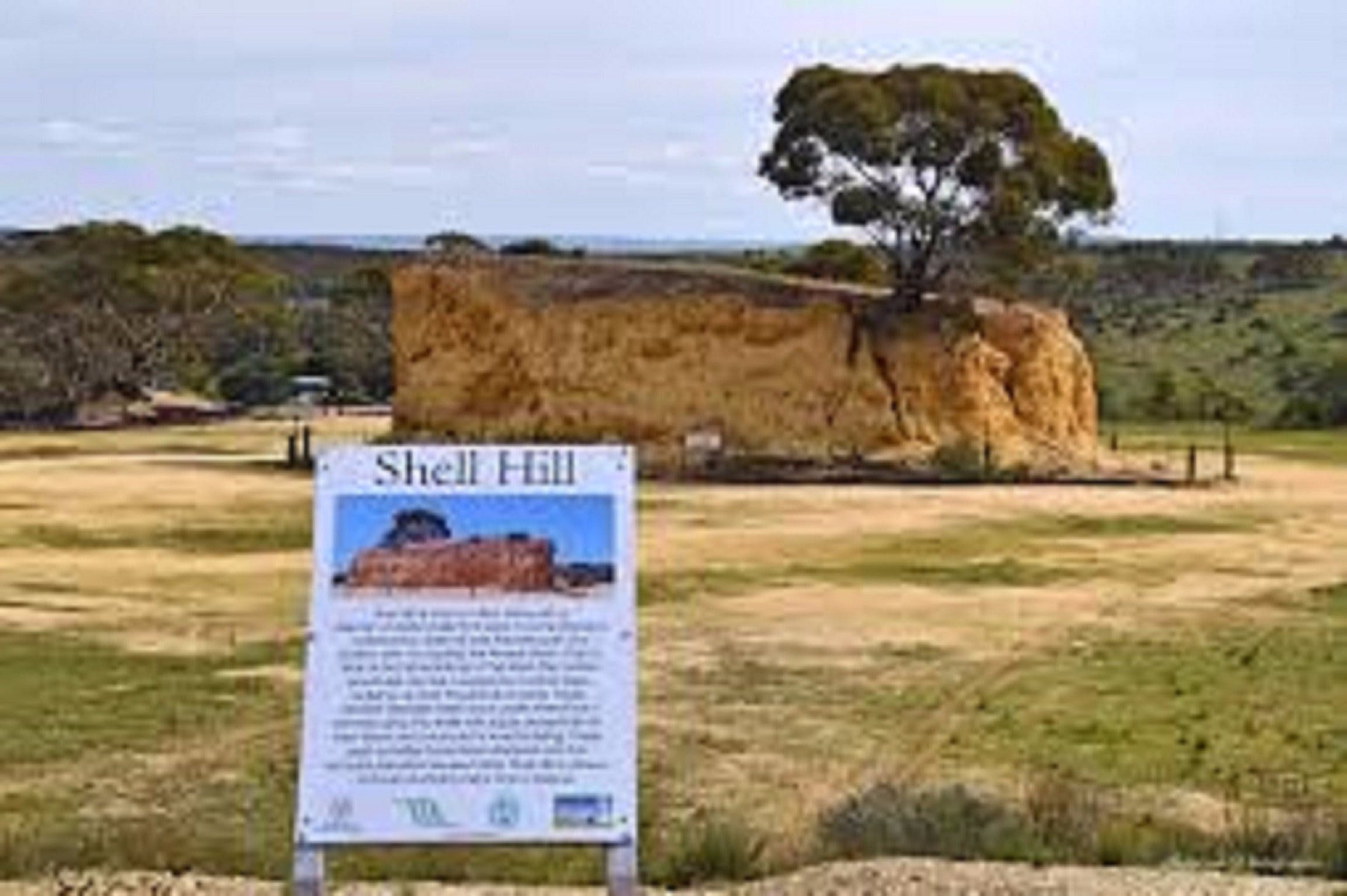 Shell Hill Reserve - Great Ocean Road Tourism
