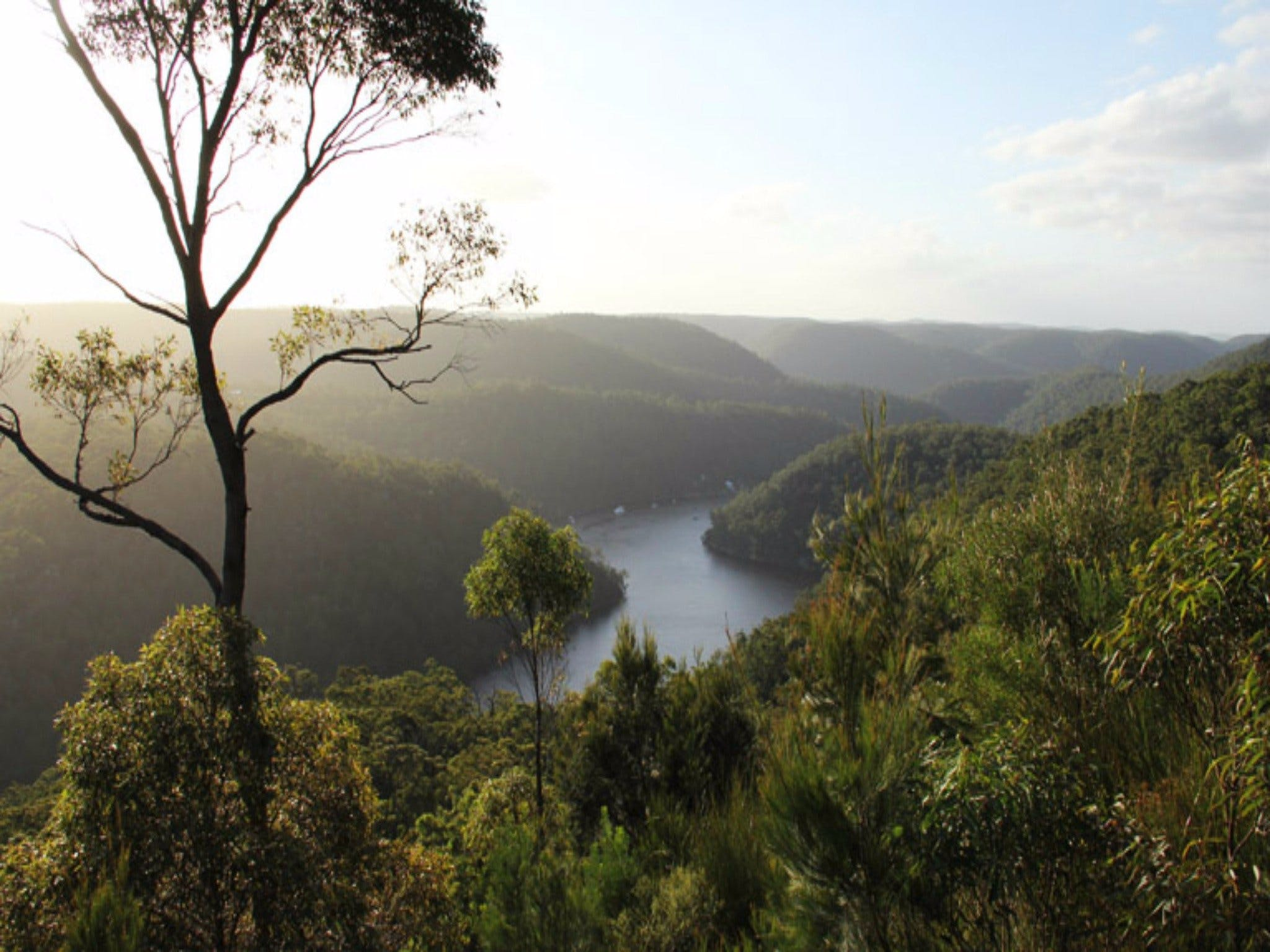 Berowra Valley National Park - Great Ocean Road Tourism