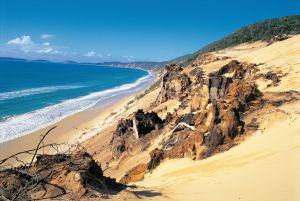 Cooloola Great Sandy National Park - Great Ocean Road Tourism