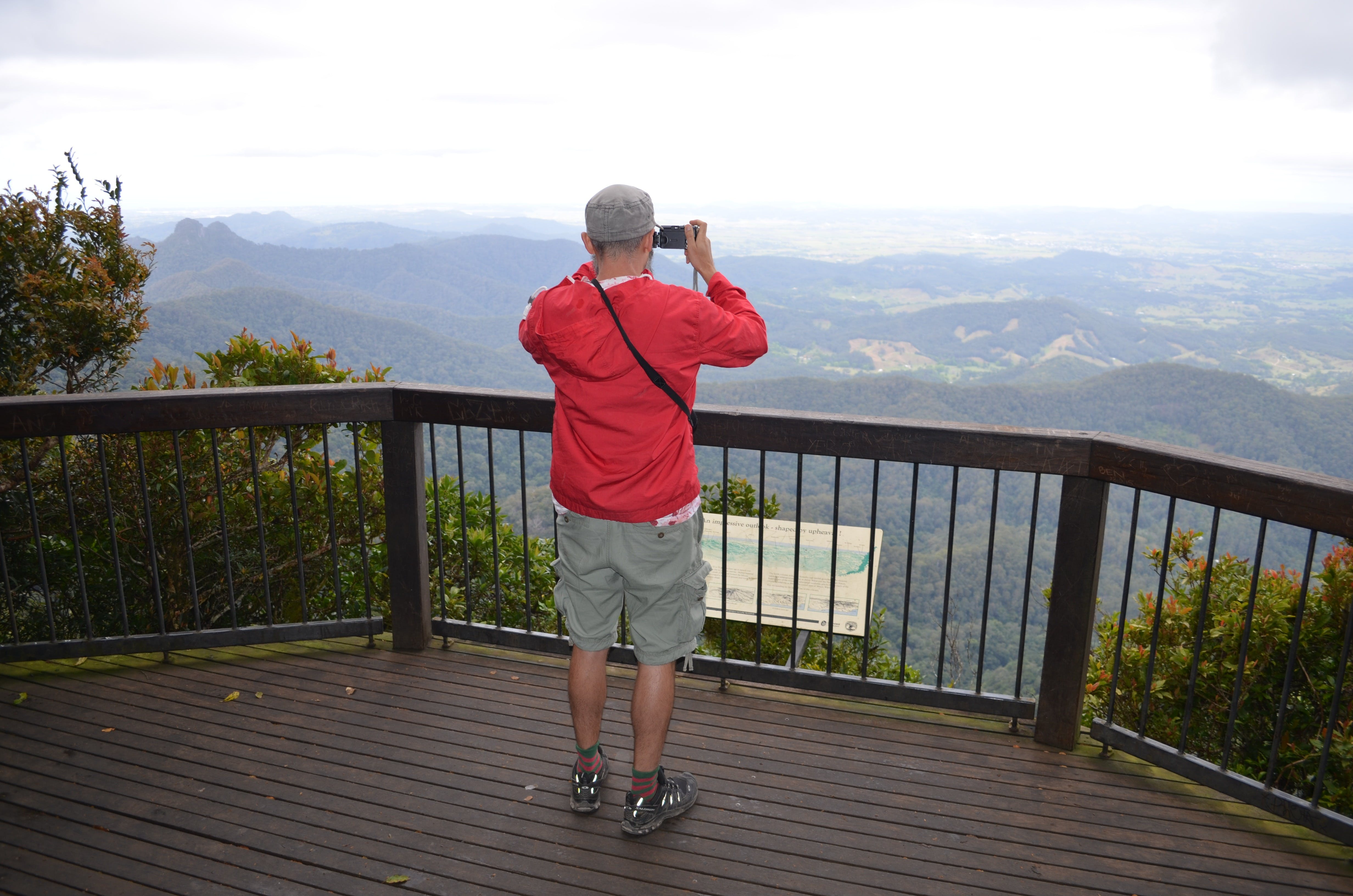 Best of All lookout track Springbrook National Park - Great Ocean Road Tourism