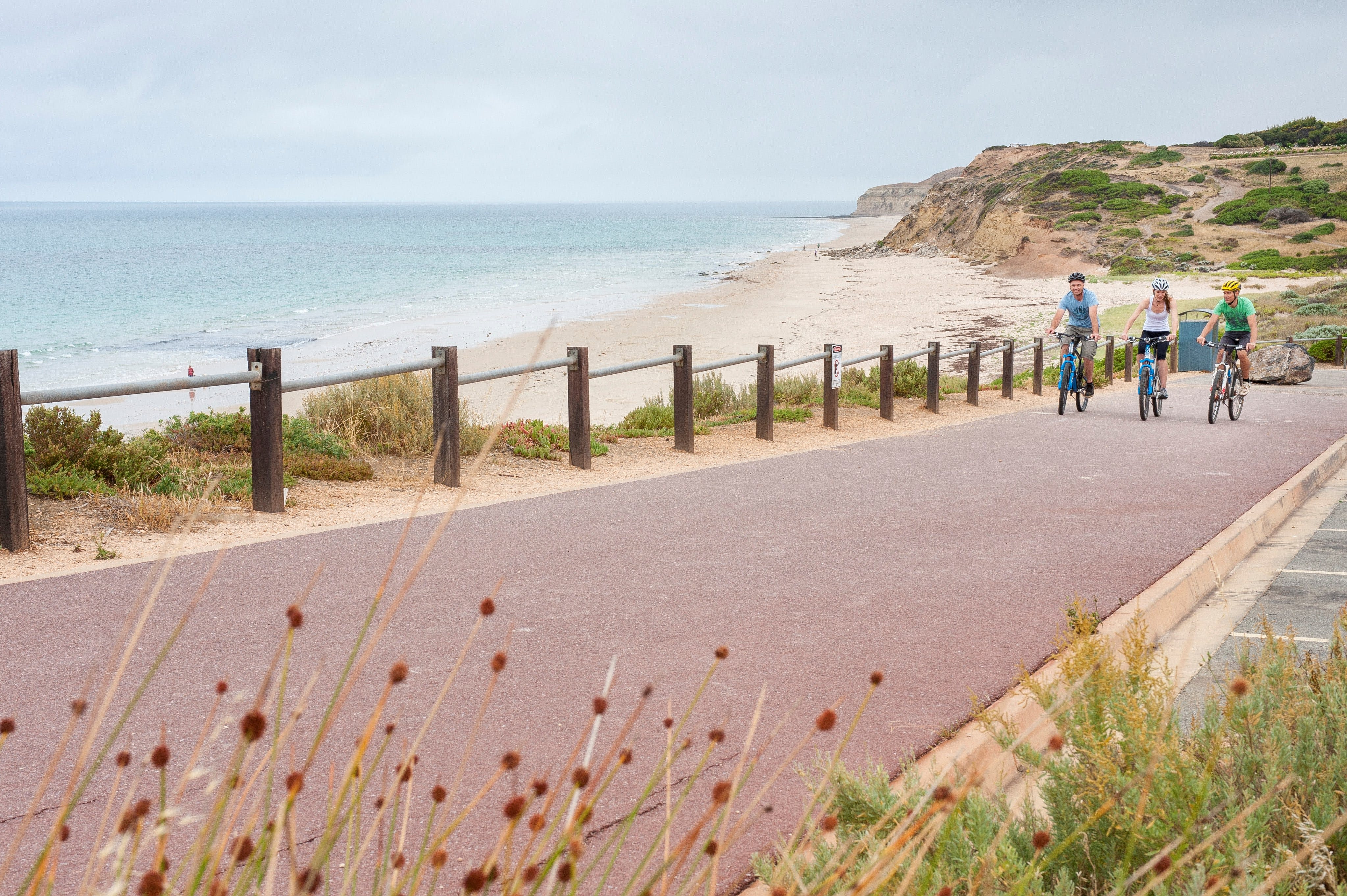 Coast to Vines Rail Trail - Great Ocean Road Tourism