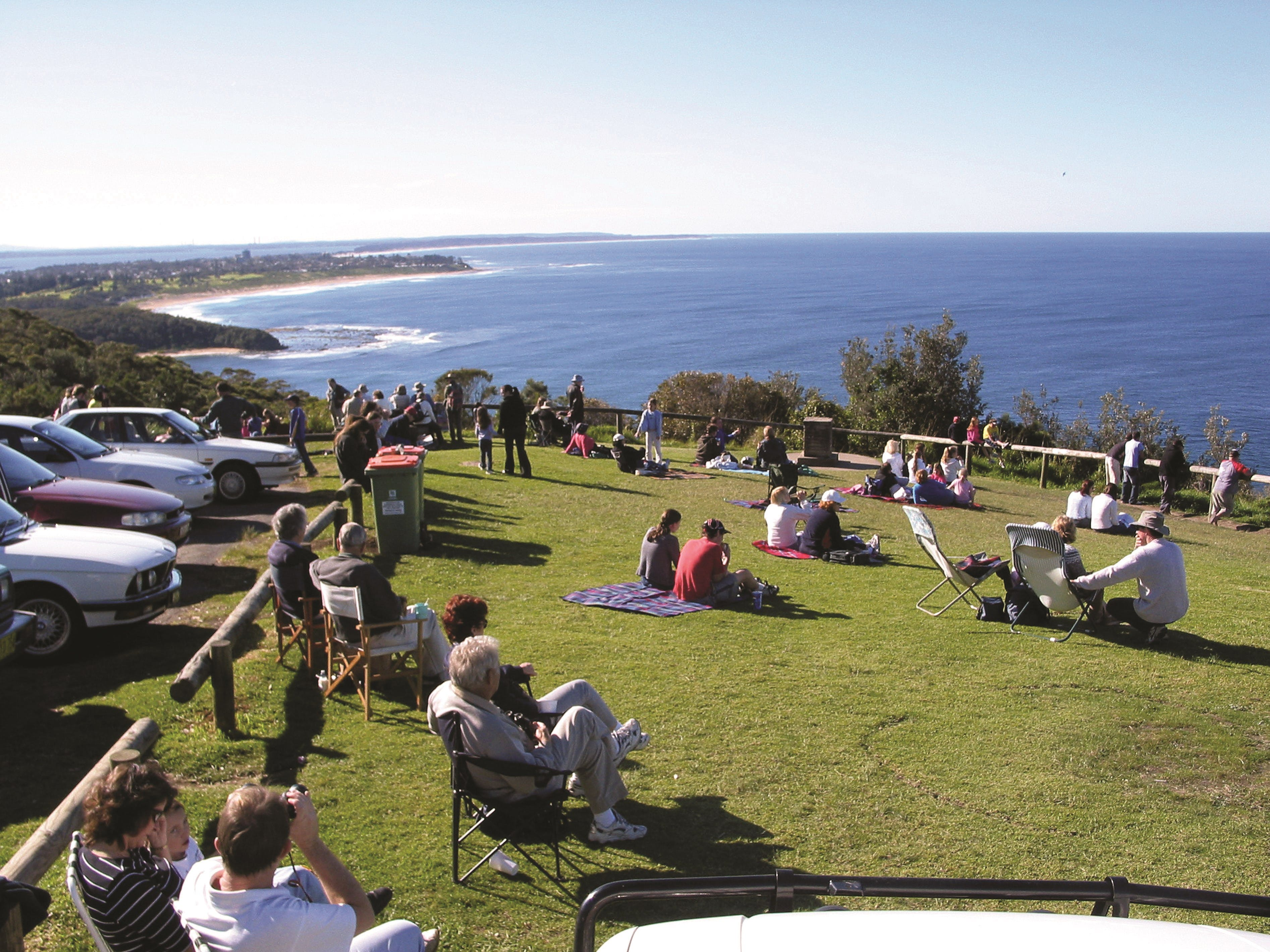 Crackneck Point Lookout - Great Ocean Road Tourism