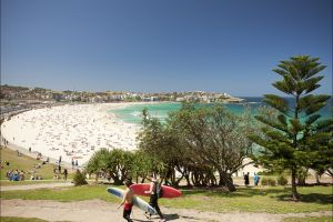 Bondi to Coogee Coastal Walk - Great Ocean Road Tourism