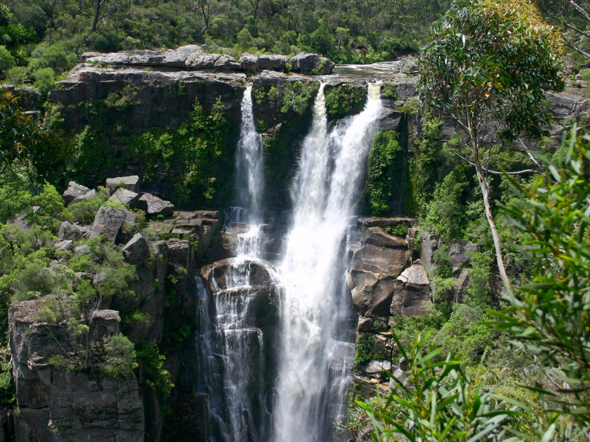 Carrington Falls - Great Ocean Road Tourism