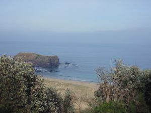 Bushrangers Bay - Great Ocean Road Tourism