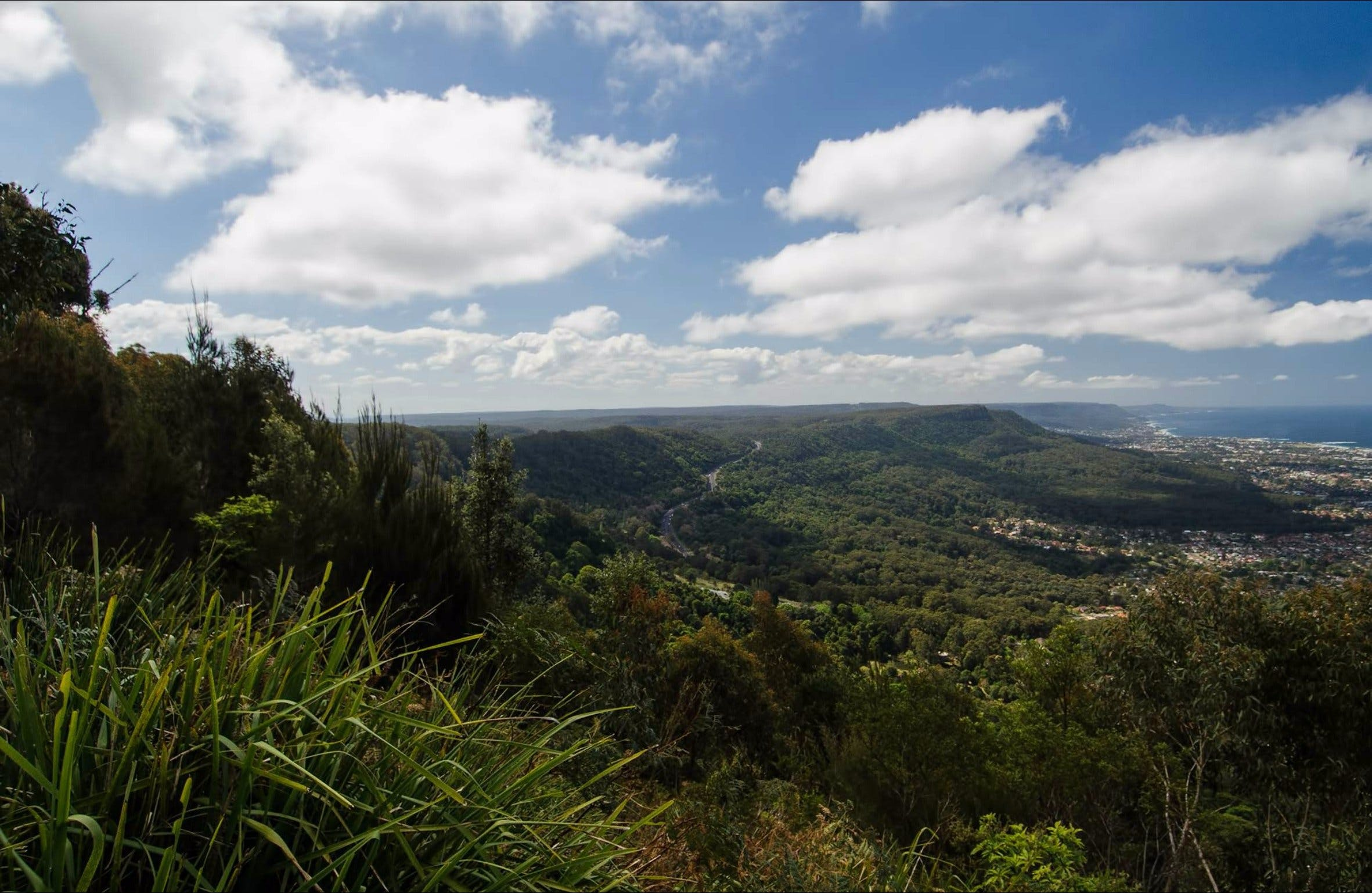 Illawarra Escarpment State Conservation Area - Great Ocean Road Tourism