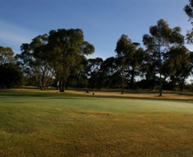 Winchelsea Golf Club - Great Ocean Road Tourism