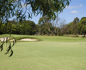 Curlewis Golf Club - Great Ocean Road Tourism