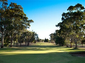 Loxton Golf Club - Great Ocean Road Tourism