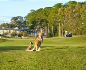 Sanctuary Cove Golf and Country Club - Great Ocean Road Tourism