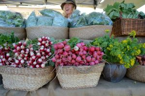 Berry Farmers' Market - Great Ocean Road Tourism
