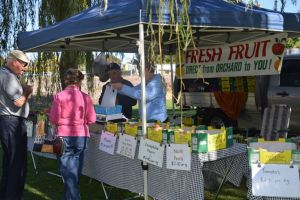Corowa Rotary Federation Festival Market - Great Ocean Road Tourism