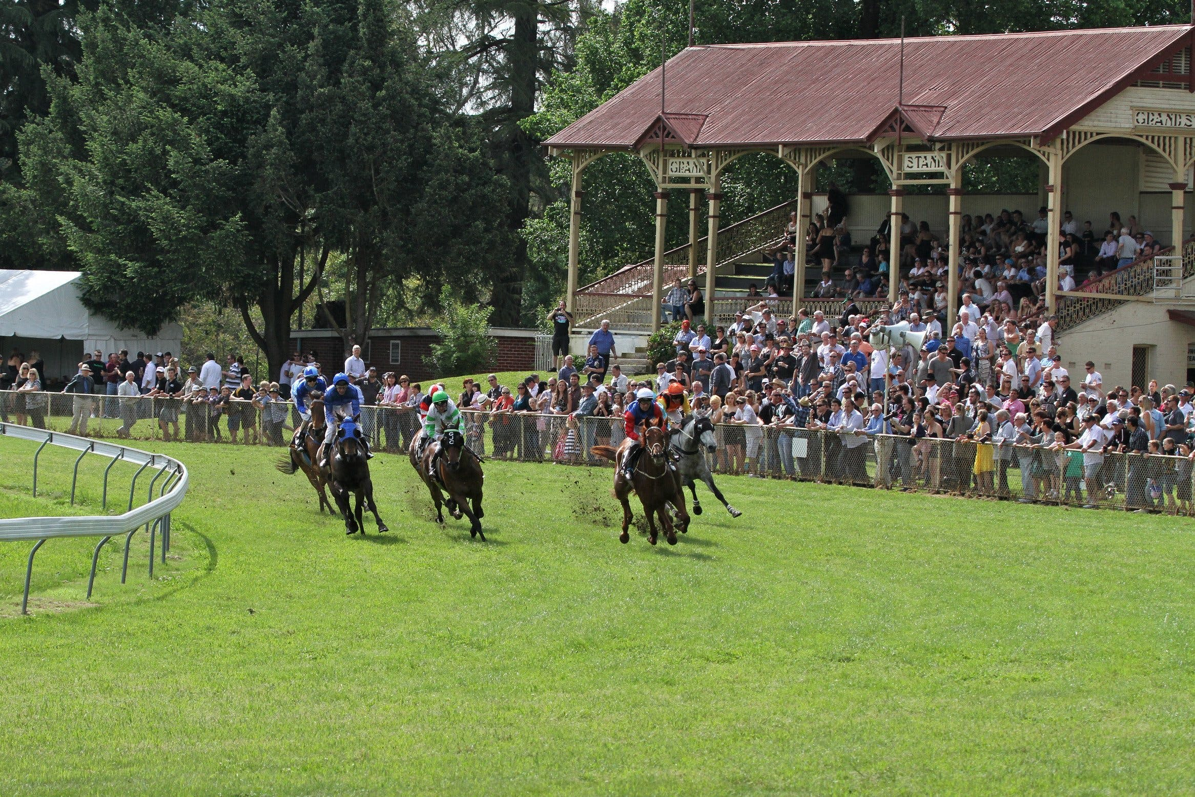 Tumut Derby Day - Great Ocean Road Tourism