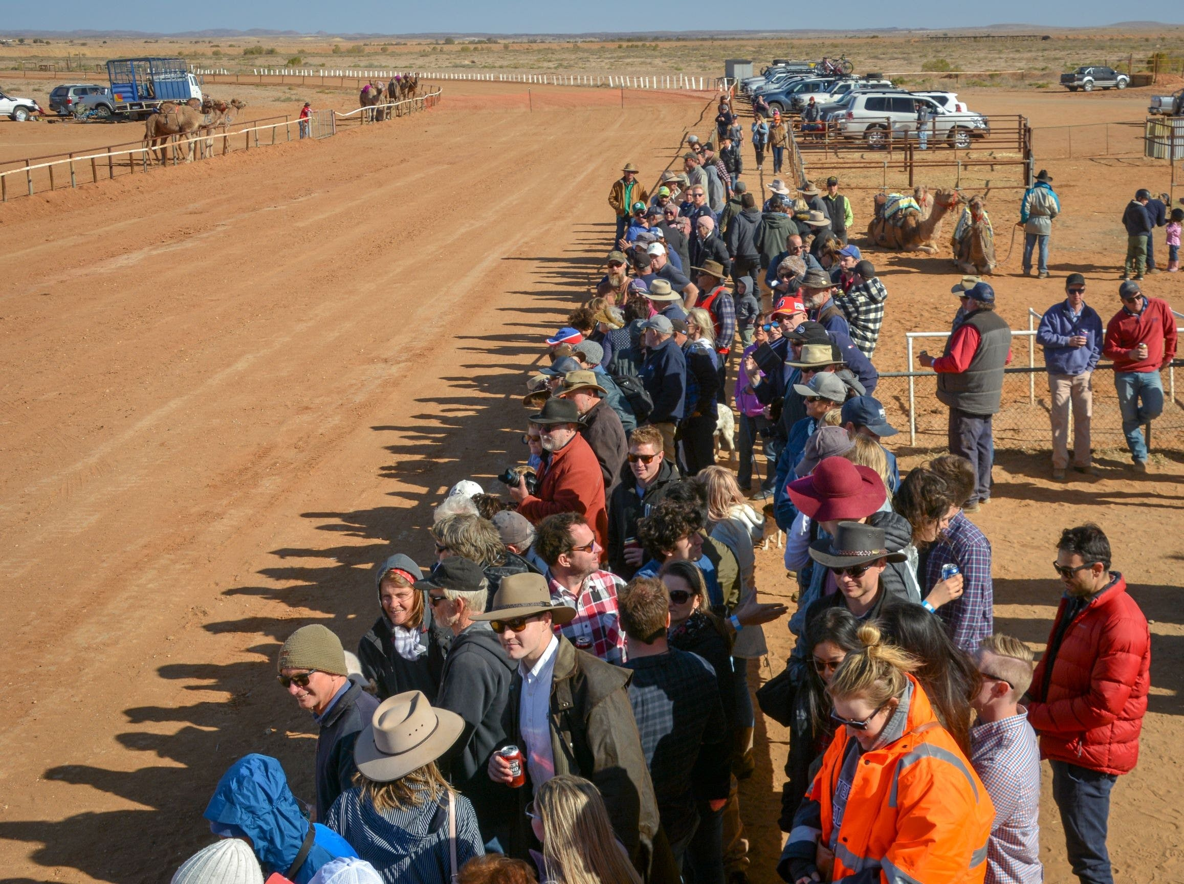 28th Marree Australasian CAMEL CUP 3 July 2021 - Great Ocean Road Tourism