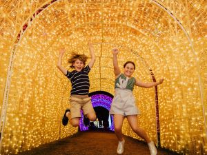 Christmas Lights Spectacular New Year's Eve at Hunter Valley Gardens - Great Ocean Road Tourism