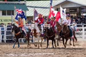 Warwick Rodeo National APRA National Finals and Warwick Gold Cup Campdraft - Great Ocean Road Tourism